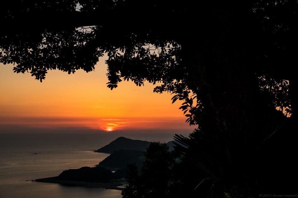 善長谷教会からの夕景とクスノキ