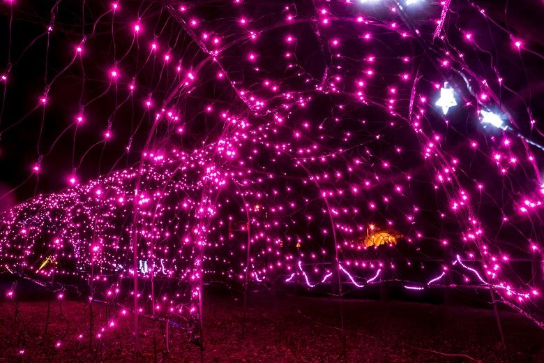 みいらく光のまちづくり(五島市白良ヶ浜万葉公園のイルミネーション)