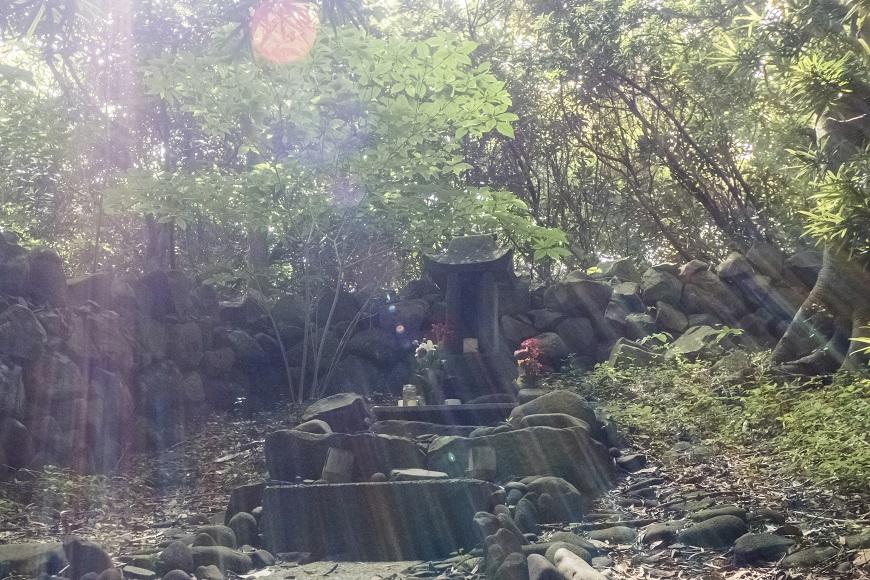 ウシワキの森(平戸市根獅子町)