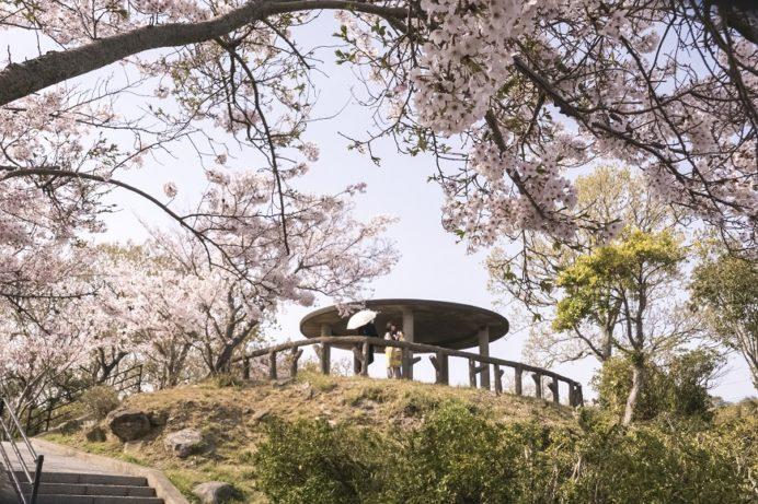 「鍋冠山公園の桜」~穴場?んー厳しい。でも景色はイイゾォーーッ!