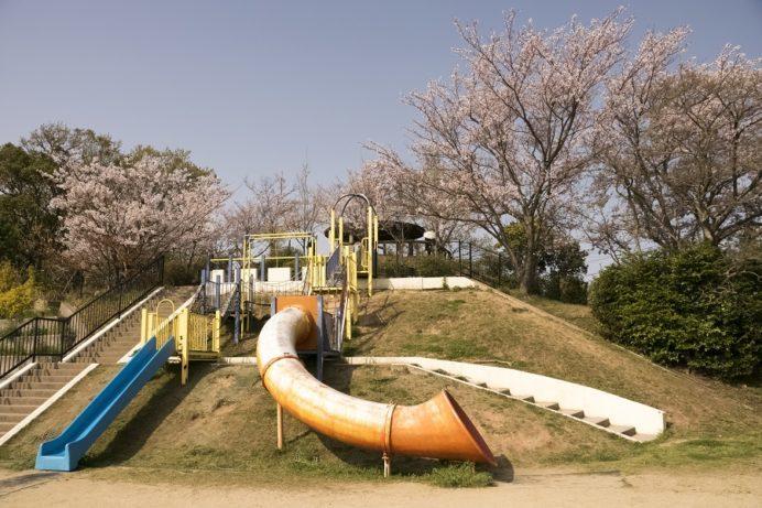 鍋冠山公園展望台(長崎市出雲)の桜と花見