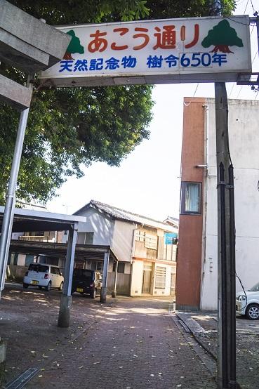 奈良尾神社・アコウ通り(上五島)