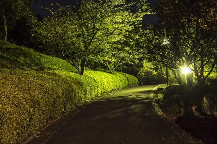 中尾城公園(夜)
