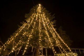 鎮西学院(長崎県諫早市西栄田町)のクリスマスツリー