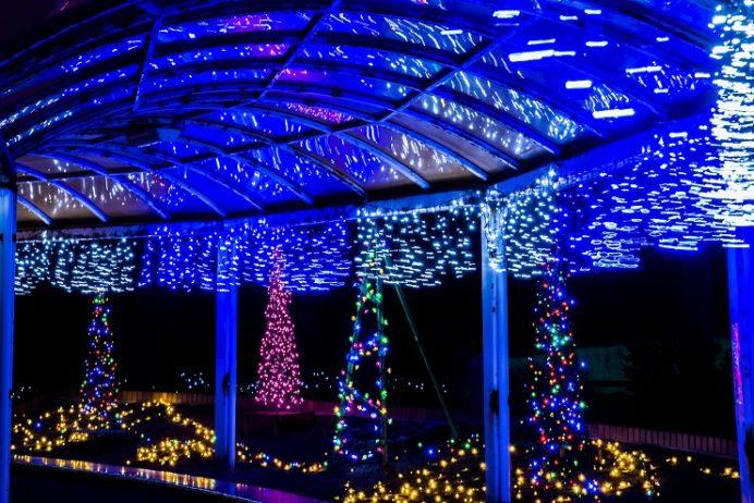 伊王島港ターミナルの冬のきらきらイルミネーション(長崎市)
