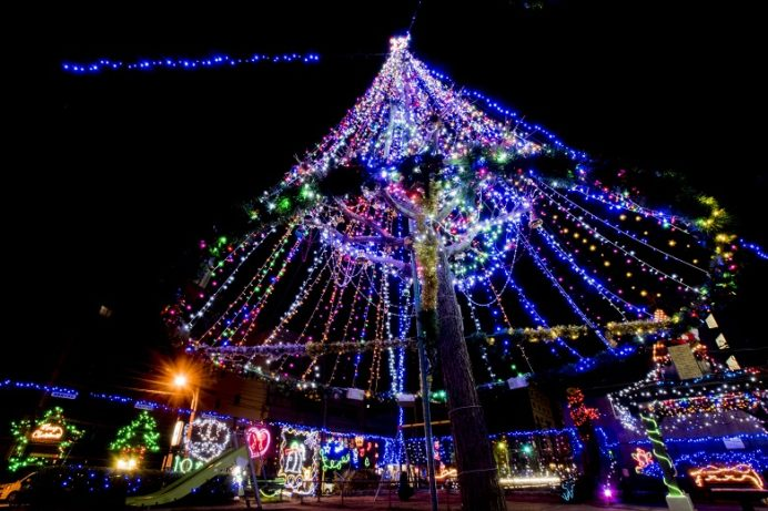 松ヶ枝公園(大浦石橋通り)のクリスマスイルミネーション