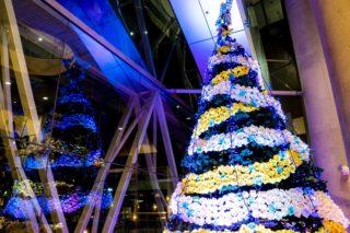 アルカスSASEBO|「バラの折紙クリスマスツリー」(佐世保市)~オンリーワン