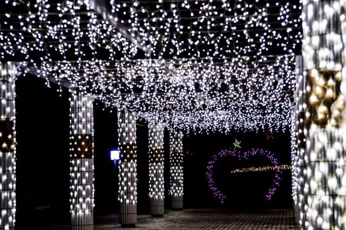 光のフェスタ (平戸市県立田平公園のイルミネーション)