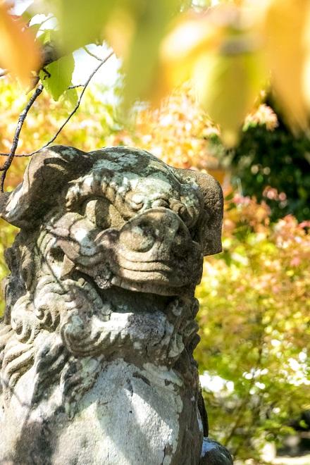 淵神社(長崎県長崎市淵町、稲佐山麓)の狛犬