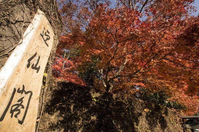 迎仙閣の紅葉(長崎市松原町)