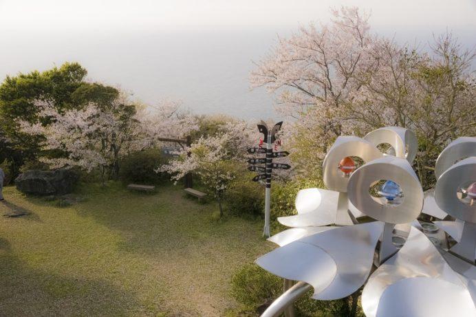 権現山展望公園(長崎市野母崎地区)の桜