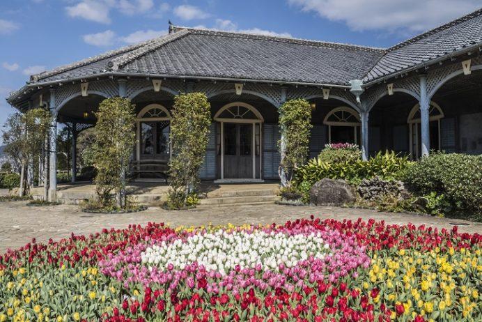 旧グラバー住宅(長崎市グラバー園)のチューリップ、世界遺産