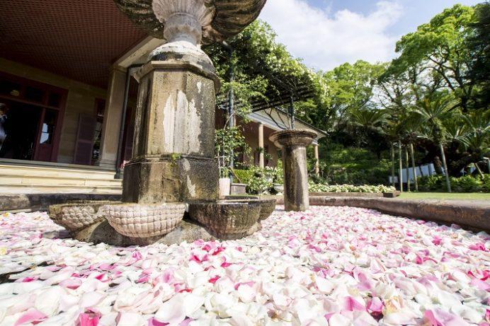 グラバー園(長崎市南山手町)のバラ、旧オルト住宅