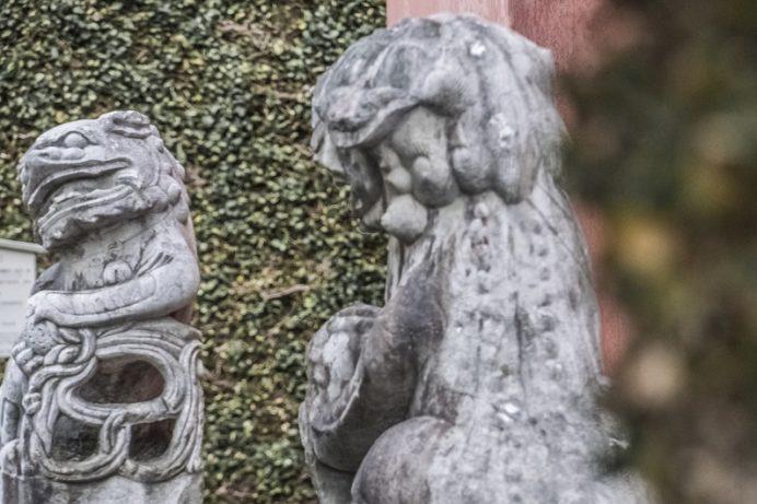 崇福寺(長崎市鍛冶屋町)の狛犬
