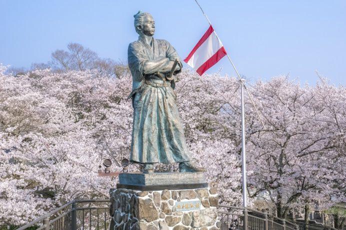 坂本龍馬之像(長崎県長崎市伊良林 風頭公園)と桜と花見