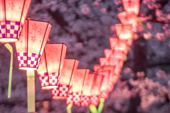夜の立山公園(長崎市)の桜と花見