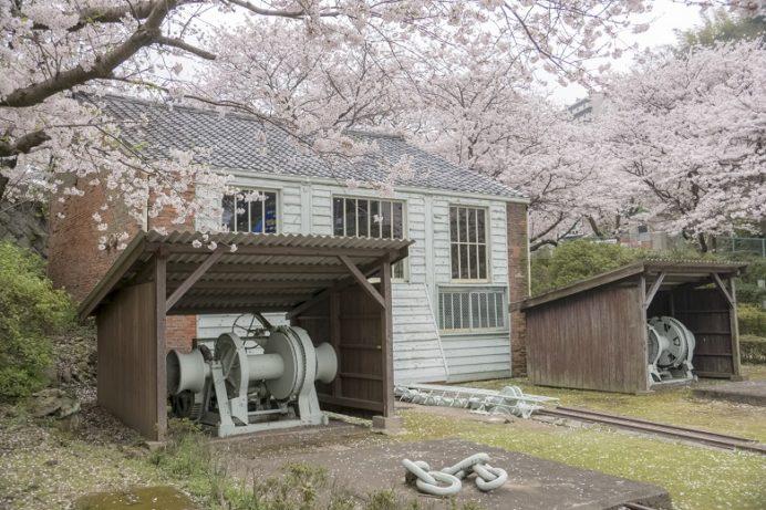 「小菅修船場跡の桜」(長崎市)【世界遺産で花見とな?】