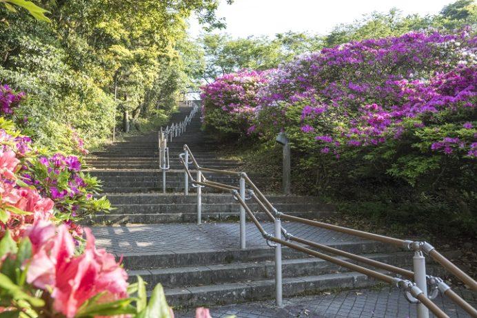 稲佐山展望台(長崎市)への遊歩道