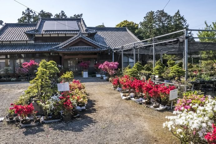 ミヤマガーデン(長崎県雲仙市)