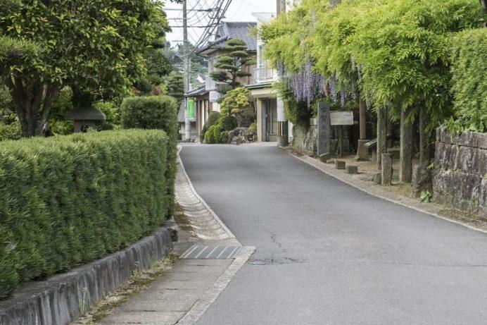 古賀の藤棚(長崎市中里町)