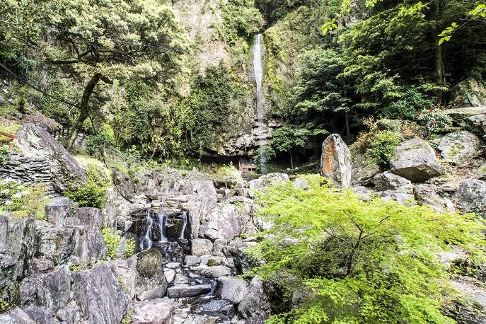 裏見の滝しゃくなげ祭り(長崎県大村市)