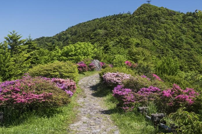雲仙岳登山道(長崎県島原半島)、野岳