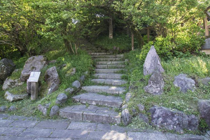 雲仙岳・仁田峠(長崎県島原半島)のミヤマキリシマ、野岳展望所