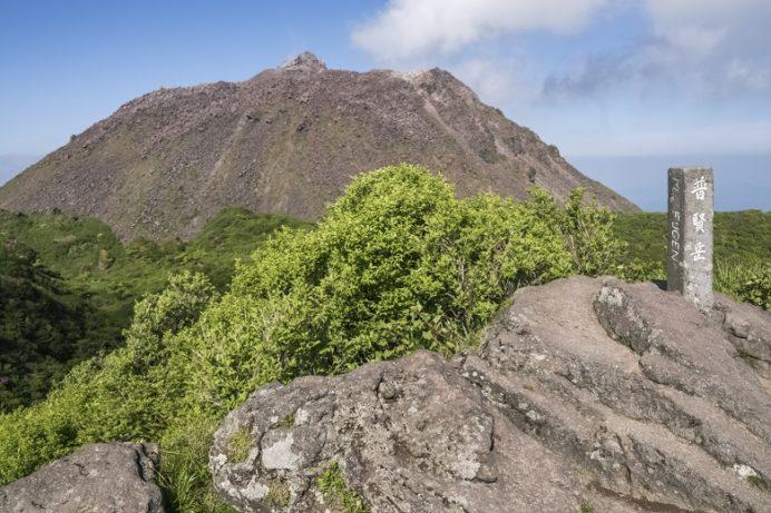 雲仙岳登山道(長崎県島原半島)、普賢岳頂上、ミヤマキリシマ