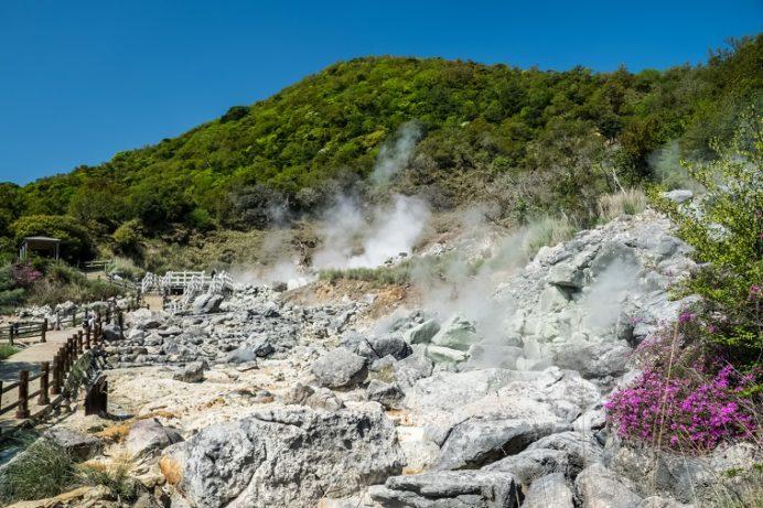 雲仙地獄(長崎県雲仙市小浜町)の邪見地獄、ミヤマキリシマ