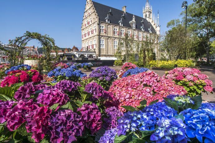 ハウステンボス(長崎県佐世保市)のあじさい祭、アムステルダム広場