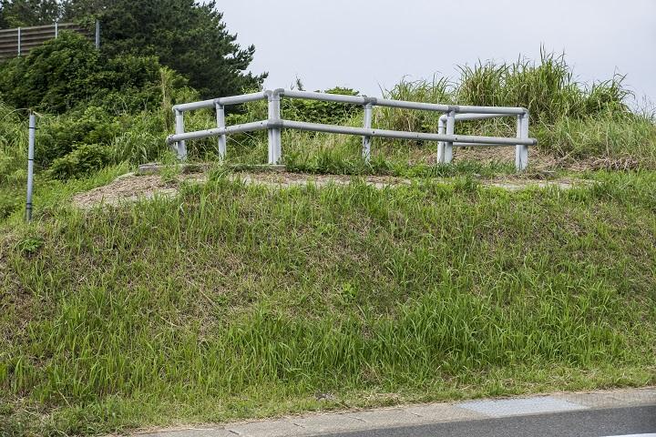 魚津ヶ崎公園(五島市岐宿町)のあじさい