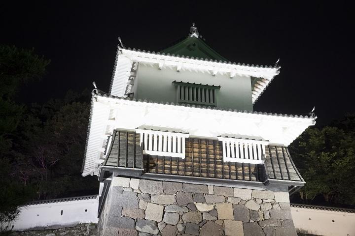 大村公園(長崎県)の花菖蒲、夜間ライトアップ