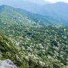 【見頃速報2021!6/21(月)更新】「雲仙のヤマボウシ」~九千部岳含む名所8か所を網羅~