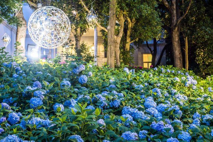 ハウステンボス(長崎県佐世保市)のあじさい祭の夜間ライトアップ