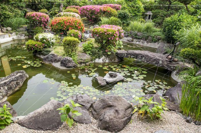 興福寺(長崎市寺町、唐寺)の庭園(東明燕)