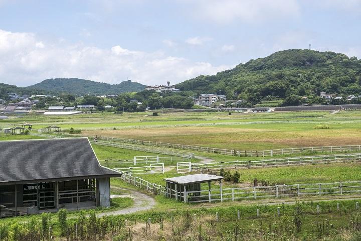 唐比ふれあい牧場(長崎県諫早市森山町)