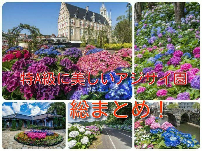 長崎県のアジサイ園(あじさい園)