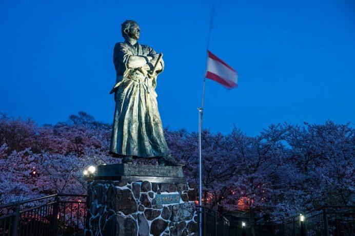 坂本龍馬之像と風頭公園の夜桜