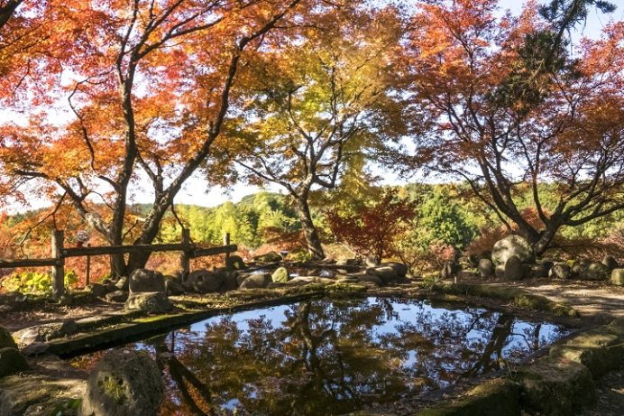 三十路苑( 長崎県雲仙市小浜町)、雲仙の紅葉の名所