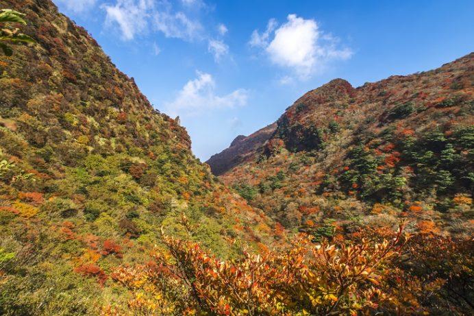 雲仙岳登山道(長崎県島原半島)、鬼人谷口の紅葉