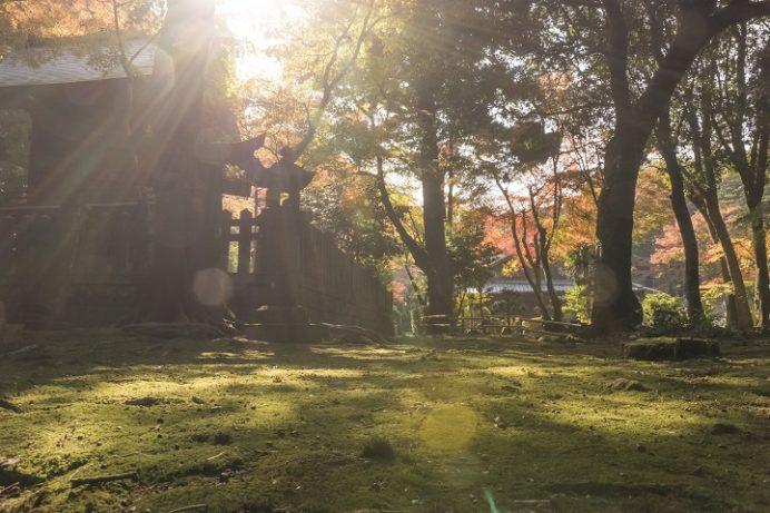金比羅神社の紅葉(長崎市)