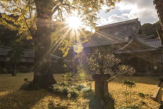 天祐寺(長崎県諫早市)の紅葉