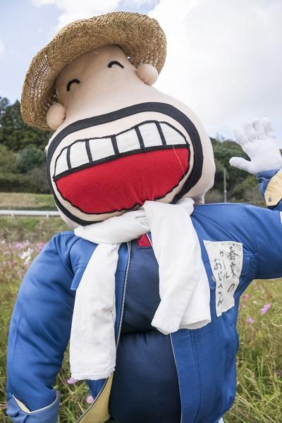 スマイル米の内コスモス畑(平戸市田平町)