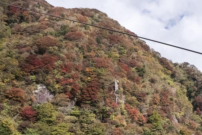 雲仙岳登山道(長崎県島原半島)、紅葉