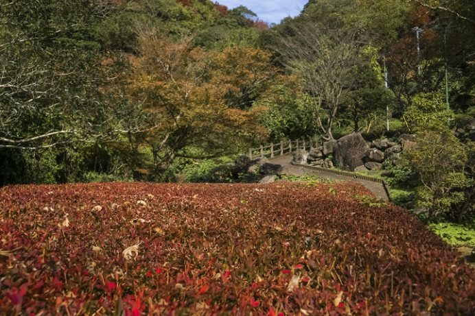 潜竜ヶ滝公園(潜龍水)の紅葉(長崎県佐世保市江迎町)