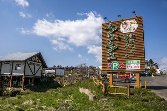 おおむら夢ファームシュシュ(大村市弥勒寺町)、ぶどう畑のれすとらん