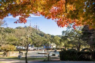 「稲佐山公園の紅葉2021」(長崎市)【見ごろはいつ?】無料駐車場が広大&遊具充実!