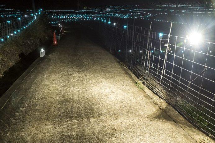 春日棚田(世界遺産)・長崎県平戸のライトアップ