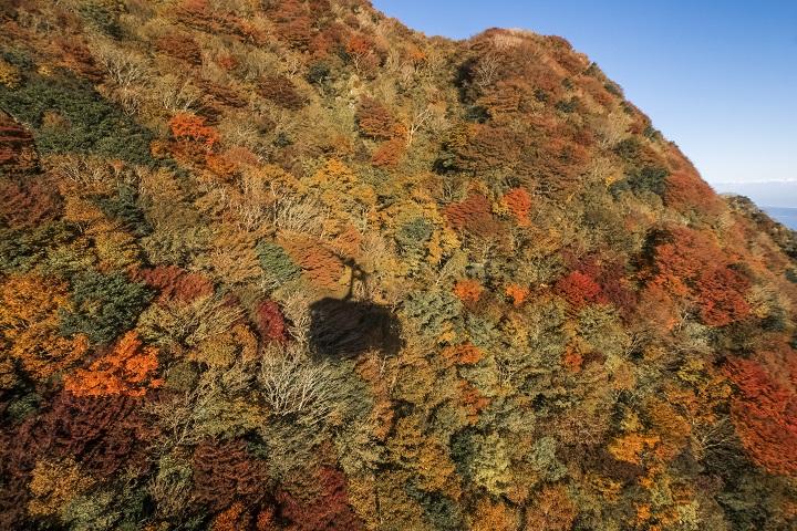 雲仙ロープウェイ(長崎県仁田峠)と紅葉、妙見岳(妙見岳南斜面