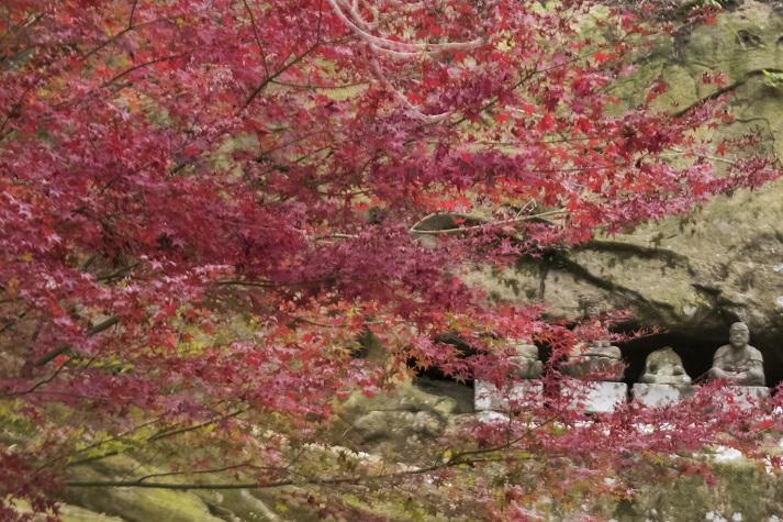 眼鏡岩・西蓮寺(佐世保市瀬戸越町)、平戸八景、紅葉、イチョウ